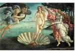 geburt-der-venus-sandro-botticelli-14771