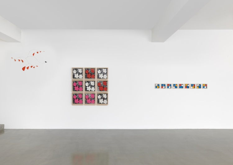 2. Flowers-installation Shot