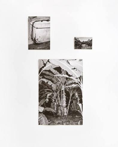 Photographs by Maisie Cousins, FiBRA, von Goetz